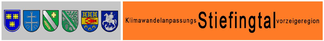 Logo KliwandelanpassungsStiefingtalvorzeigeregion